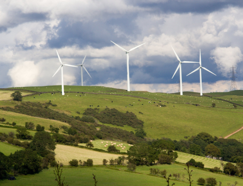 100% Renewable utility contracts at NFU Energy